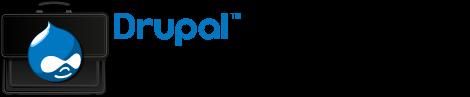 Drupal Business Summit Vienna Logo
