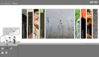 Screenshot website grienauer - Fotogalerie
