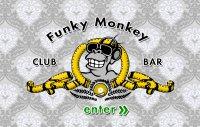 Screenshot Funky Monkey Website - Intro