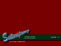 Screenshot Seitensprung Webseite - Intro
