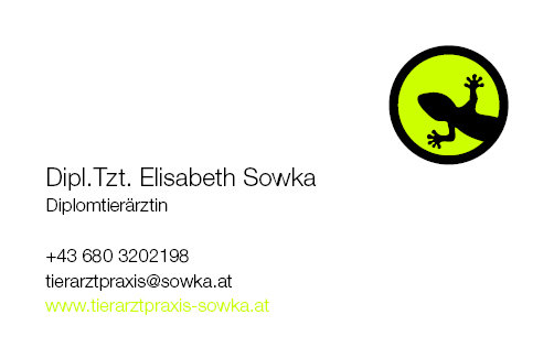 Tierarztpraxis Sowka Visitenkarte Vorderseite - Gecko
