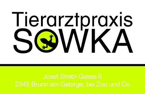 Tierarztpraxis Sowka Visitenkarte Rückseite - Gecko